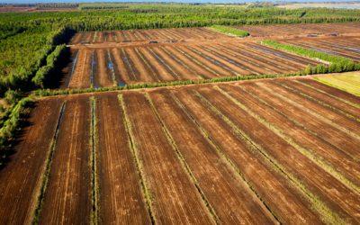 Ovatko maankäytön ja maatalouden päästöt yhä tabu?
